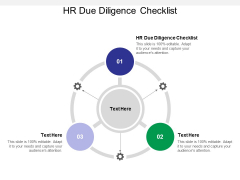 HR Due Diligence Checklist Ppt PowerPoint Presentation Infographic Template Structure Cpb