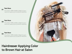 Hairdresser Applying Color To Brown Hair At Salon Ppt PowerPoint Presentation Styles Show PDF