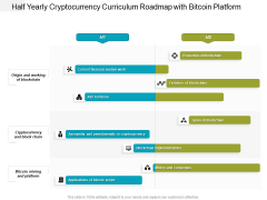 Half Yearly Cryptocurrency Curriculum Roadmap With Bitcoin Platform Graphics