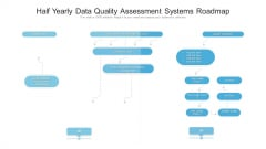 Half Yearly Data Quality Assessment Systems Roadmap Diagrams