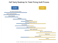 Half Yearly Roadmap For Trade Pricing Audit Process Professional
