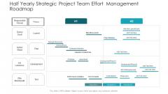 Half Yearly Strategic Project Team Effort Management Roadmap Background