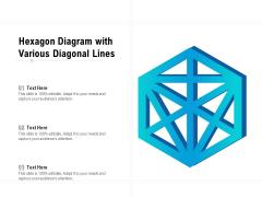 Hexagon Diagram With Various Diagonal Lines Ppt PowerPoint Presentation Icon Model PDF