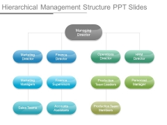 Hierarchical Management Structure Ppt Slides