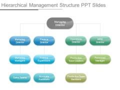 Hierarchical Management Structure Ppt Slides