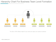 Hierarchy Chart For Business Team Level Formation Ppt PowerPoint Presentation Files