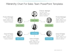 Hierarchy Chart For Sales Team Ppt PowerPoint Presentation Samples