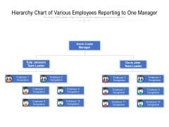 Hierarchy Chart Of Various Employees Reporting To One Manager Ppt PowerPoint Presentation Diagram Templates PDF