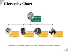 Hierarchy Chart Ppt PowerPoint Presentation Icon Skills