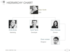 Hierarchy Chart Ppt PowerPoint Presentation Ideas