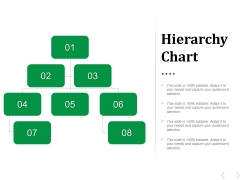 Hierarchy Chart Ppt PowerPoint Presentation Portfolio Diagrams