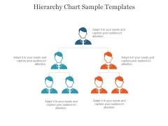 Hierarchy Chart Sample Templates Ppt PowerPoint Presentation Background Designs