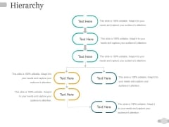 Hierarchy Ppt PowerPoint Presentation Infographics Guidelines