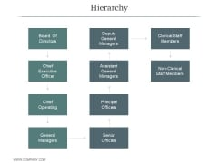 Hierarchy Ppt PowerPoint Presentation Infographics