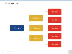 Hierarchy Ppt PowerPoint Presentation Portfolio Samples