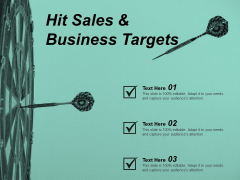 Hit Sales And Business Targets Ppt Powerpoint Presentation Summary Format