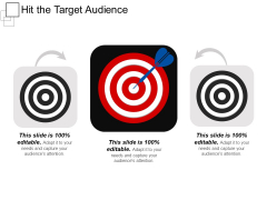 Hit The Target Audience Ppt PowerPoint Presentation Show Graphics Example