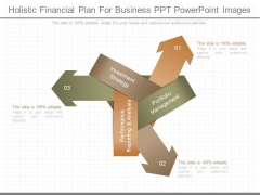 Holistic Financial Plan For Business Ppt Powerpoint Images