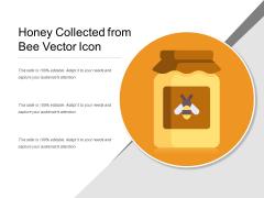 Honey Collected From Bee Vector Icon Ppt PowerPoint Presentation File Elements PDF