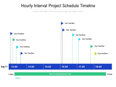 Hourly Schedule Incident Response Plan Ppt PowerPoint Presentation Ideas Diagrams PDF