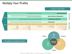 How Transform Segments Company Harmony And Achievement Multiply Your Profits Template PDF