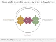 Human Capital Diagnostics Example Powerpoint Slide Background