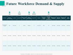 Human Capital Management Procedure Future Workforce Demand And Supply Inspiration PDF