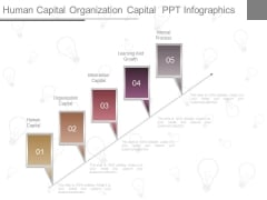 Human Capital Organization Capital Ppt Infographics