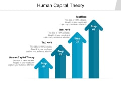 Human Capital Theory Ppt PowerPoint Presentation Infographics Background Cpb
