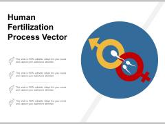 Human Fertilization Process Vector Ppt Powerpoint Presentation Slides Design Inspiration