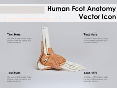 Human Foot Anatomy Vector Icon Ppt PowerPoint Presentation Outline Graphics Example PDF
