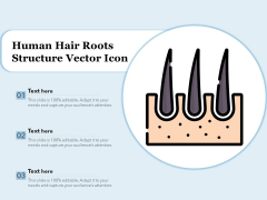 Human Hair Roots Structure Vector Icon Ppt PowerPoint Presentation Outline Example PDF