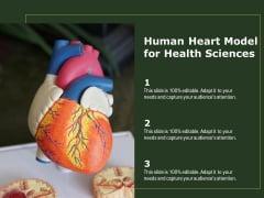 Human Heart Model For Health Sciences Ppt PowerPoint Presentation Portfolio Images PDF
