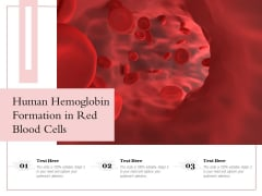 Human Hemoglobin Formation In Red Blood Cells Ppt PowerPoint Presentation Gallery Images PDF