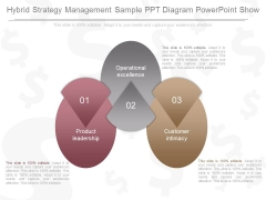 Hybrid Strategy Management Sample Ppt Diagram Powerpoint Show