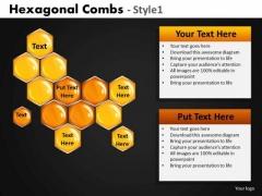 Hexagonal Combs PowerPoint Template