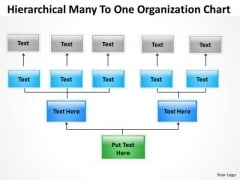 Hierarchical Many To One Organization Chart Ppt Software For Business Plan PowerPoint Slides