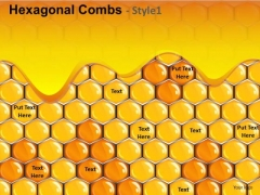 Honey Combs PowerPoint Background Slides