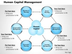 Human Capital Management Business PowerPoint Presentation