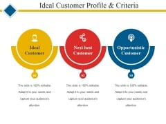 Ideal Customer Profile And Criteria Ppt PowerPoint Presentation Icon Show