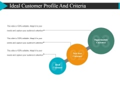 Ideal Customer Profile And Criteria Ppt Powerpoint Presentation Infographic Template Slide Portrait