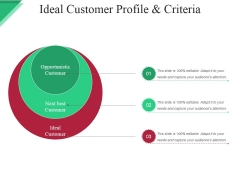 Ideal Customer Profile And Criteria Ppt PowerPoint Presentation Outline Examples
