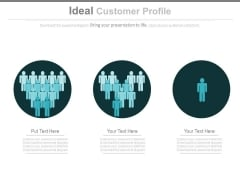 Ideal Customer Profile Ppt Slides