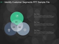 Identify Customer Segments Ppt PowerPoint Presentation Ideas