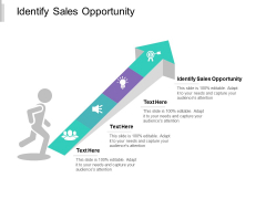 Identify Sales Opportunity Ppt PowerPoint Presentation File Slide Cpb