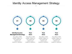 Identity Access Management Strategy Ppt PowerPoint Presentation Professional Slide Portrait Cpb Pdf