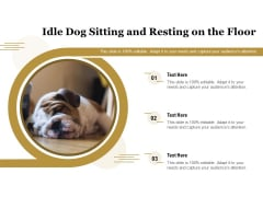 Idle Dog Sitting And Resting On The Floor Ppt PowerPoint Presentation File Tips PDF