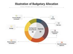 Illustration Of Budgetary Allocation Ppt PowerPoint Presentation Gallery Master Slide PDF