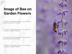 Image Of Bee On Garden Flowers Ppt PowerPoint Presentation Pictures Example File