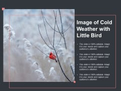 Image Of Cold Weather With Little Bird Ppt PowerPoint Presentation Gallery Infographics